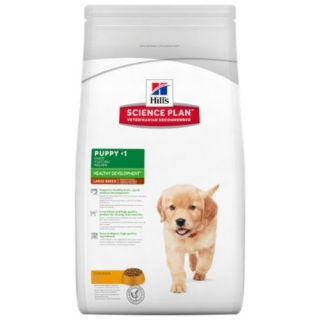 Hill's Puppy Healthy Development Large 2,5kg